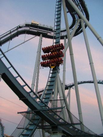 Busch Gardens Williamsburg: The Griffon at Dusk