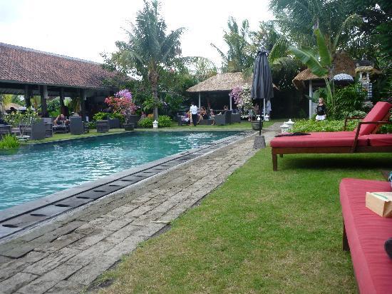 3V Kerobokan: Pool and grounds