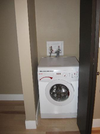washing machine/dryer..every room has one of these