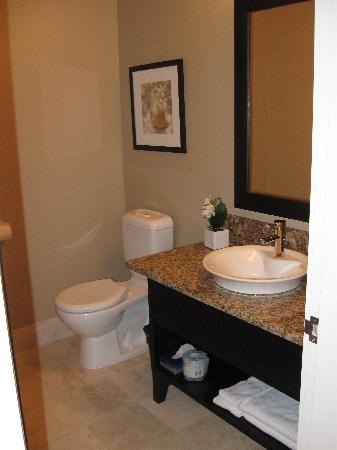 The Parkside Hotel & Spa: main bath...shower around corner
