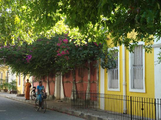 Hotel de l'Orient : The streetscape outside, yes, this is India!