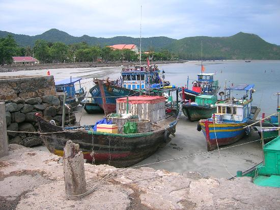 Con Dao Camping: The habour