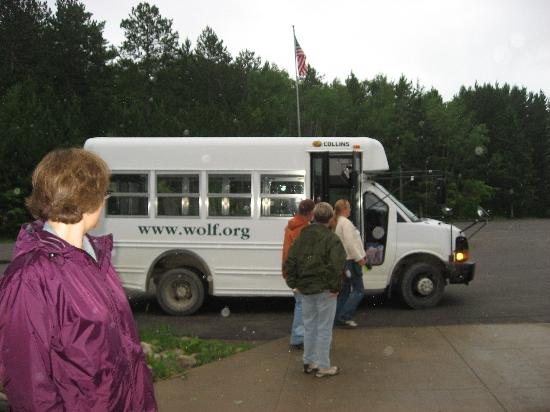International Wolf Center: Excursions are available.