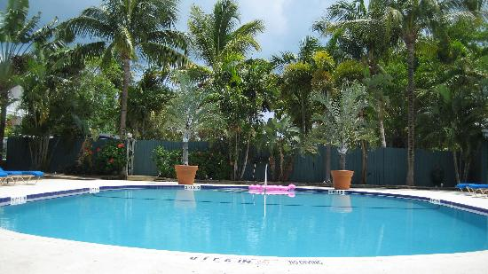 Banana Bay Resort - Key West: pool