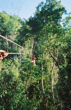 Calico Jack's Belize Jungle Canopy and Zip Lining