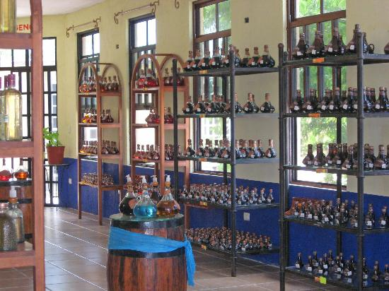Tequila Factory Picture Of Best Buy Tours Cozumel