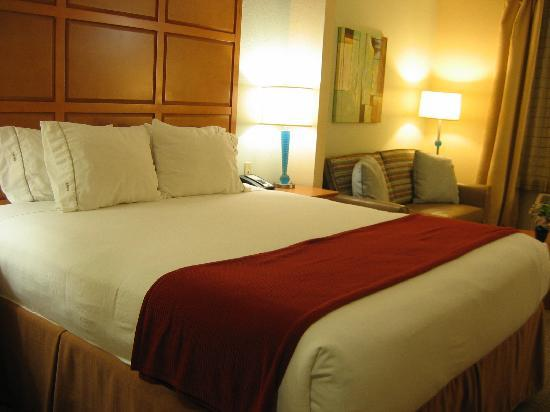 Holiday Inn Express Hotel & Suites: room
