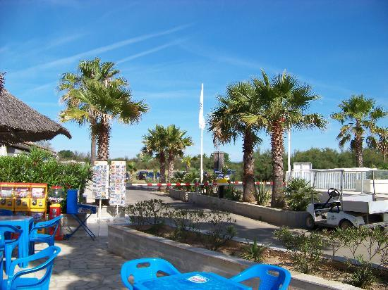 Camping les Ondines : Entrée camping