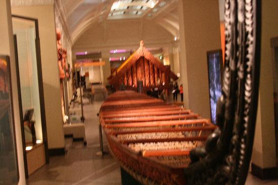 Toru Tours: Auckland Museum Waka
