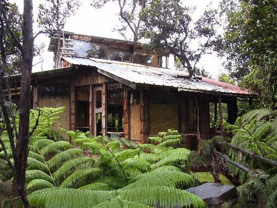 Treehouse Skye: 外からみたtreehouse