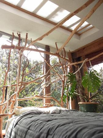 Treehouse Skye: ここでの目覚めは最高!