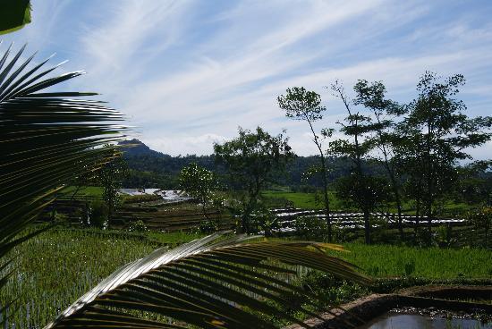 Villa Sumbing Indah: Vue de la terrasse de la chambre VIP