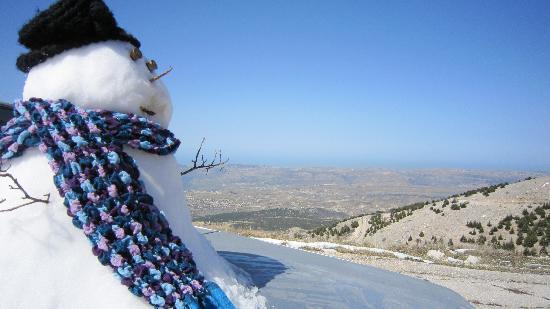 Barouk, Líbano: Al Shouf Cedar Reserve