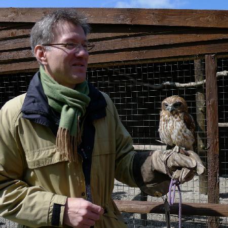 Screech Owl Sanctuary: Holding Kaya on the glove
