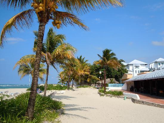 Grand Paradise Playa Dorada: View of buffet restaurant from beach
