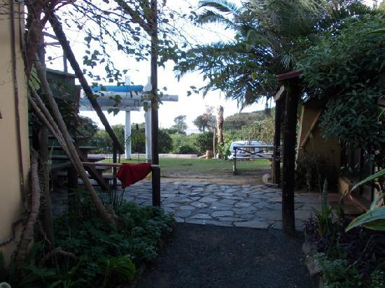 Jungle Monkey Backpackers: Passage to the front