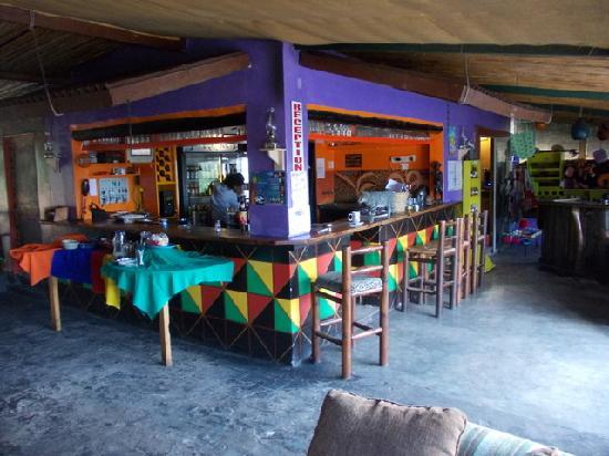 Jungle Monkey Backpackers: Pub area