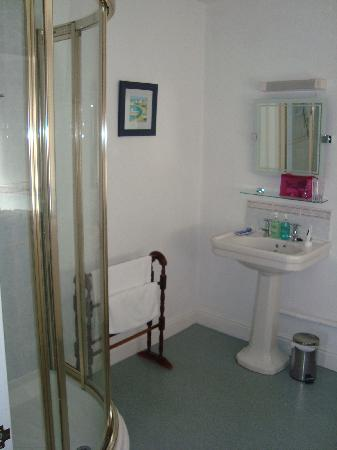 Aberconwy House: large bathroom
