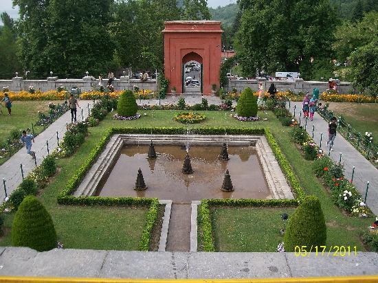 Srinagar, Hindistan: CHASMESHAHI GARDEN