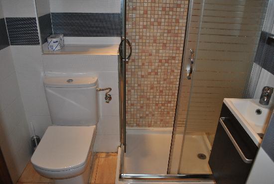 Hostal Pension San Ramon: the toilet