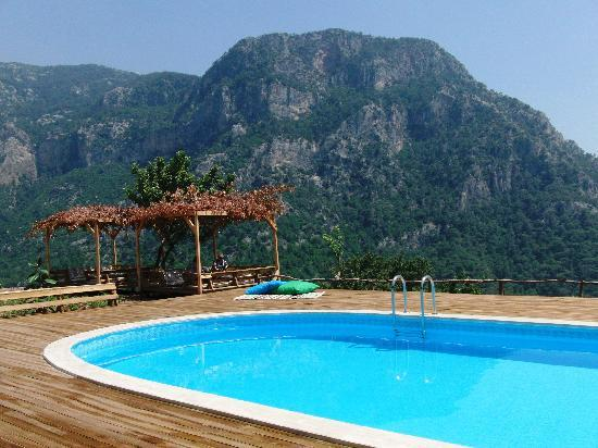 Olive garden at kabak swimming pool again picture of for Garden pool reviews