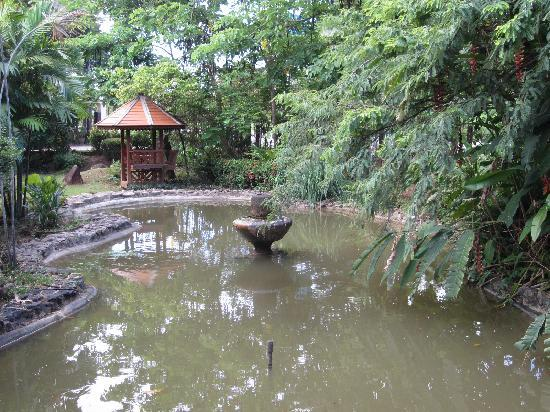 Faasai Resort & Spa: the small pond