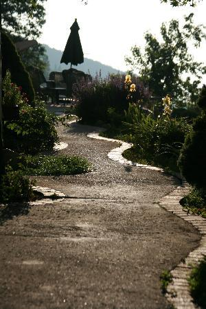 Serendipity Ranch Bed and Breakfast: One of the pretty walkways on the grounds.
