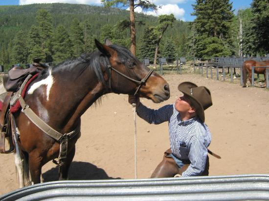 Wilderness Trails Ranch: Rico the best horse in town