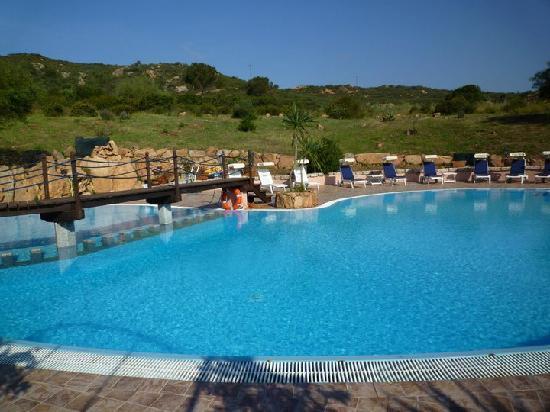 Hotel Fenicottero Rosa : The pool