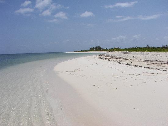 North Beach Island: More of North Beach