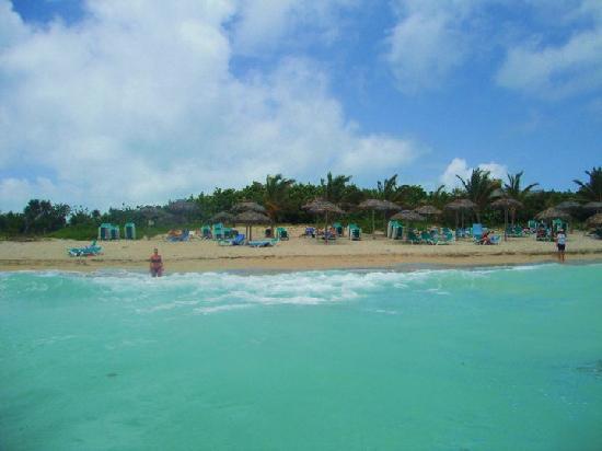 Melia Península Varadero: Beach