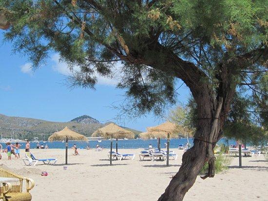 Romantic Hotel: Beautiful beach