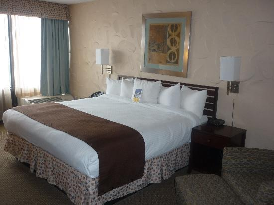 BEST WESTERN Albany Airport Inn: New King Bedded Rooms With Microwave, Refrigerator, And Free WiFi In Albany NY