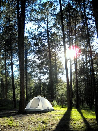 Big Pine Campground : Tent site