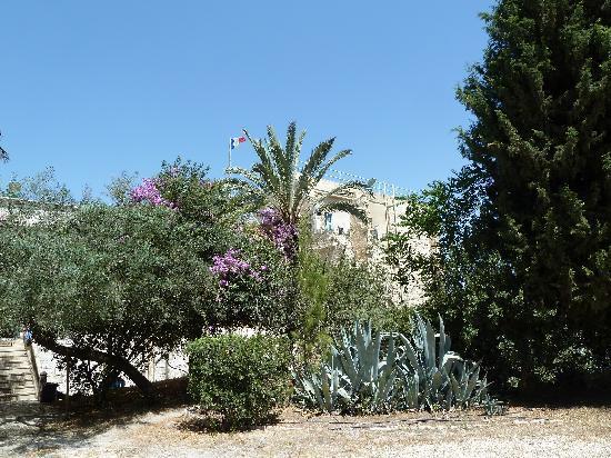 La Maison d'Abraham: Jardin maison d'Abraham