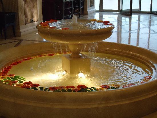 Sol Costa Atlantis: reception