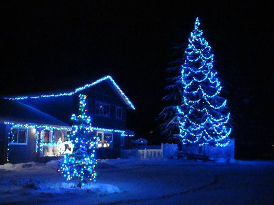 Alpenrose Bed and Breakfast: winter lights