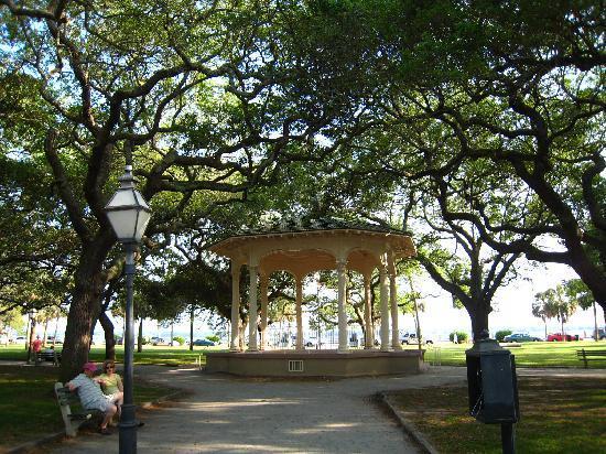 Charleston, Güney Carolina: Oak trees lining parks.