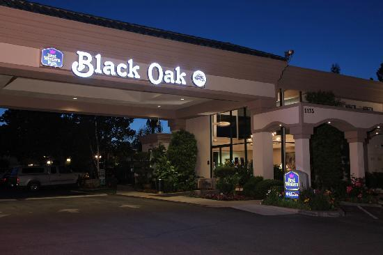 Best Western Plus Black Oak: Night photo of porte cochere and sign