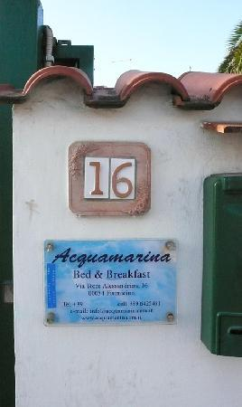 Acquamarina Bed & Breakfast : Fiumicino is a seaside town of gated and walled gardens