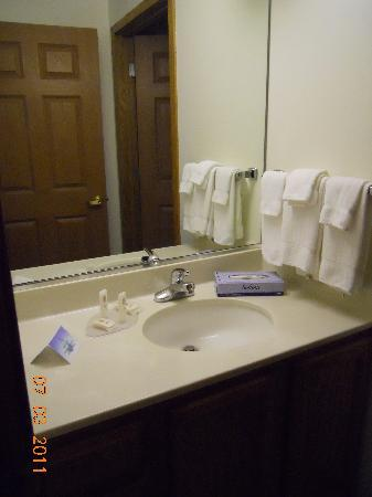 TownePlace Suites Salt Lake City Layton: Vanity area