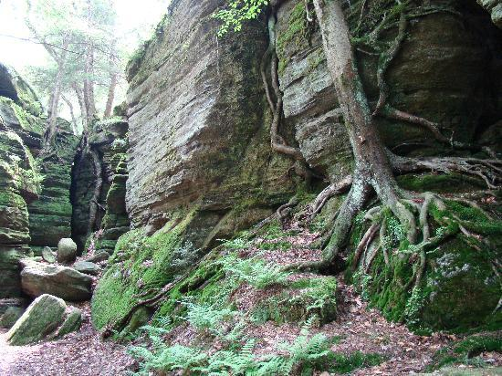 Panama Rocks Scenic Park: Eagle Claw and Cannonball Canyon