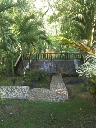 Table Rock Jungle Lodge: view from the dining room