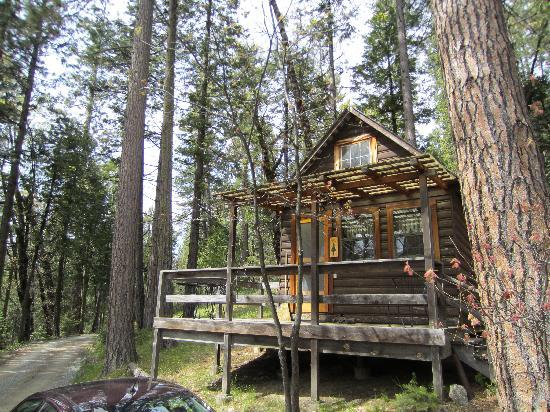 Sunset Inn Yosemite Vacation Cabins 사진