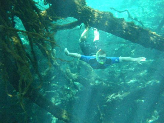 Hacienda Tres Rios : snorkeling the Rio Selva at Tres Rios