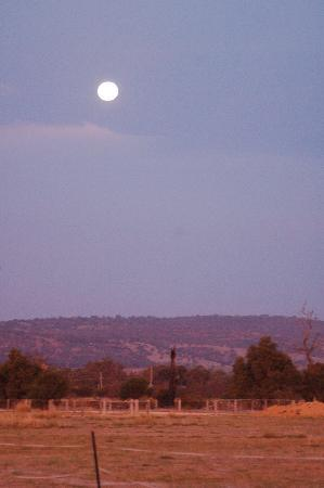 Bullsbrook Chalets : See the moon under clear starry nights