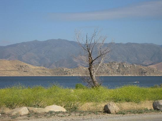 Tillie Creek Campground: Lake Isabella