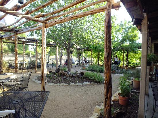 Welfare Cafe: The Arbor