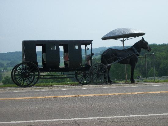 Walnut Creek, Огайо: Amish Taxi