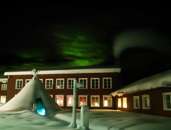 Forest Hotel: aurora borealis & Foresthotel